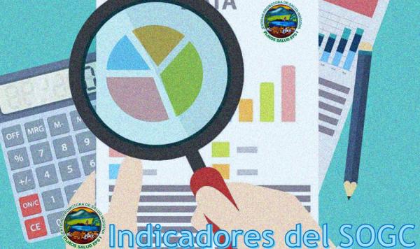 INDICADORES SOGC